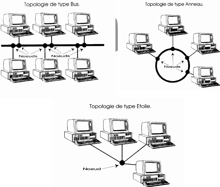 topologies reseau informatique
