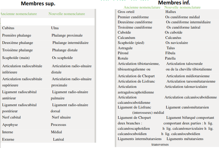 Exemples de chamgements de nomemclature pour les membres sup et inf