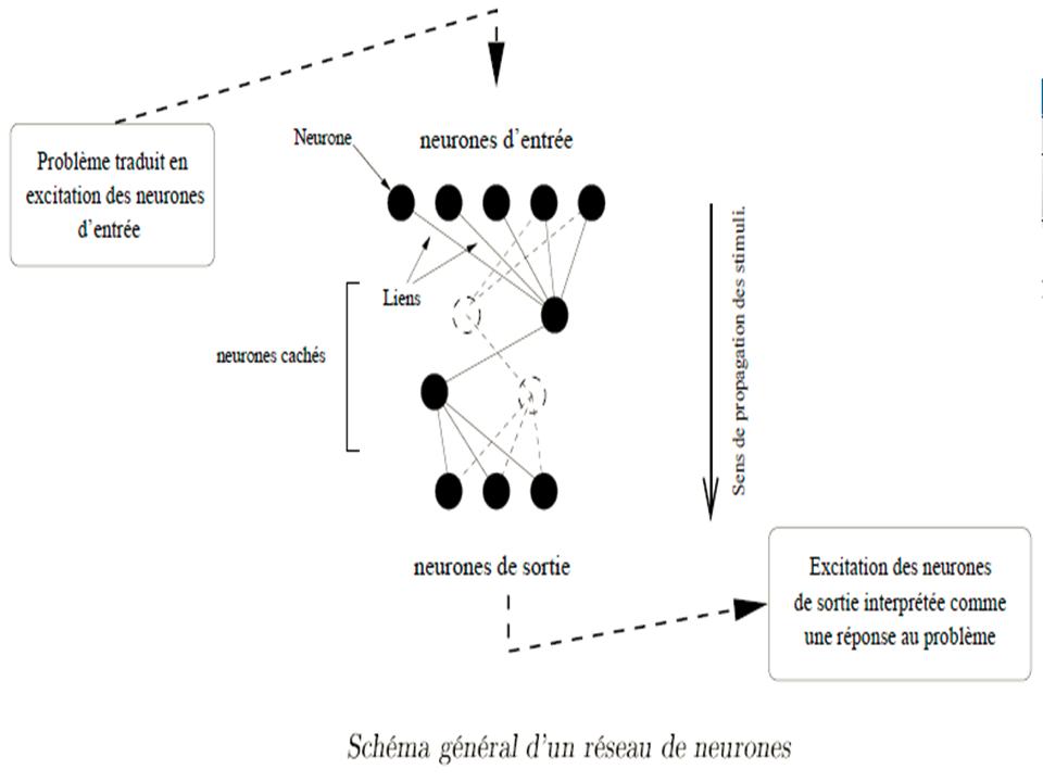 Réseau de neurones en informatique