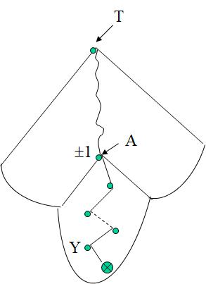 Arbre AVL: Insertion (Algorithme)