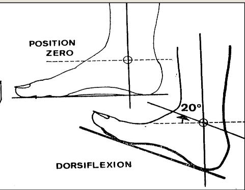 Cours-gratuit-Flexion dorsale de la cheville