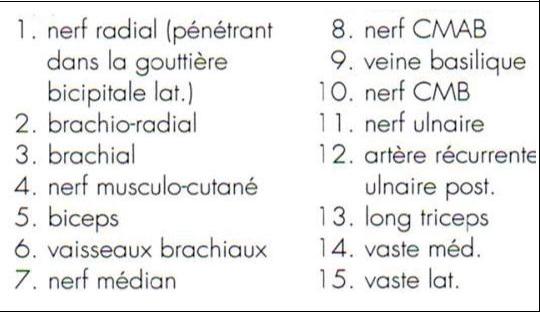 Cours-gratuit-word image 128