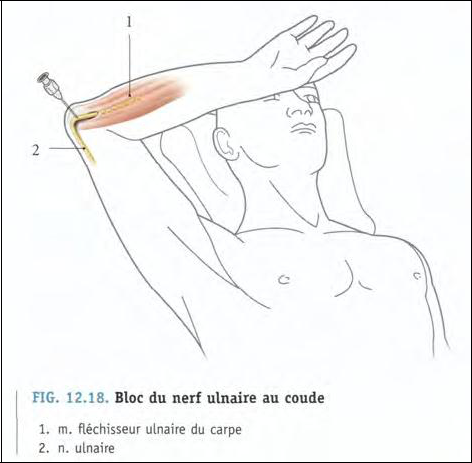 Cours-gratuit-word image 129