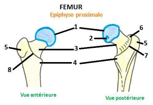 Cours-gratuit-word image 140