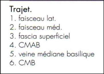 Cours-gratuit-word image 153