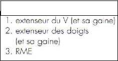 Cours-gratuit-word image 98