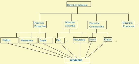 Cours-gratuit-Structure Fonctionnelle