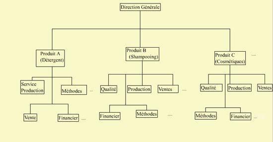 Cours-gratuit-structure Divisionnelle decentralisee