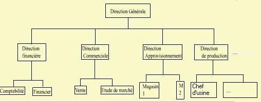 Cours-gratuit-structure Hierarchique ou Pyramidale